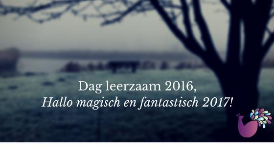 Dag leerzaam 2016, hallo magisch 2017!